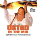 Ustad In The Mix CD