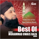 Best Of Alhajj Muhammad Owais Raza Qadri CD