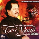 Teri Yaad (Remix) CD